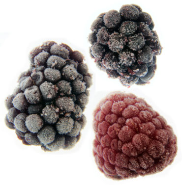 Tainted Frozen Berries Spread Hepatitis-A Across West