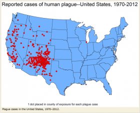 Southwest Plague Cases Help High US Ranking For Bubonic Infections